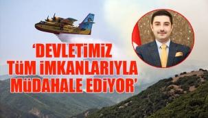 AKP Tunceli İl Başkanı, yangın fotoğrafına photoshop ile söndürme uçağı ekledi